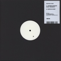 "Nathan Fake - Degreelessness ft. Prurient/ Now We Know [12""]"