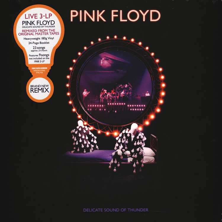 Pink Floyd - Delicate Sound Of Thunder (2019 Remix)  [3LP]