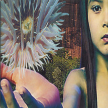 The Future Sound Of London - Lifeforms [2LP]
